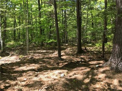 Residential Lots & Land For Sale: 102 Leisure Lane