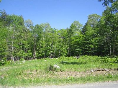 Medway Residential Lots & Land For Sale: 214 Wilderness Drive