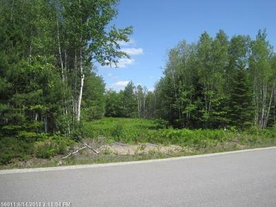 Bangor Residential Lots & Land For Sale: Lot 35 Tamarack Trail