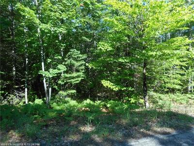 Residential Lots & Land For Sale: Lot 4 Buck Hill Dr