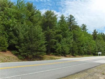 Gouldsboro Residential Lots & Land For Sale: Lot 14f Route 1