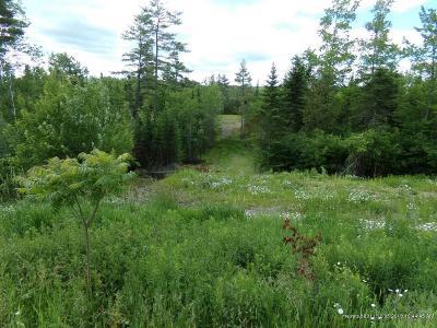 Residential Lots & Land For Sale: 2024 Hemlock Ridge Dr