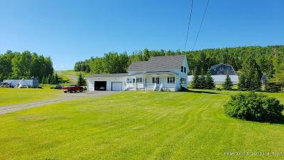 Fort Kent Single Family Home For Sale: 1049 Caribou Road