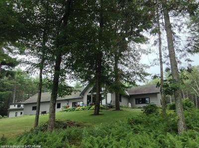 Single Family Home For Sale: 239 Durham Bridge Rd