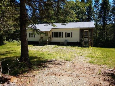 Mount Chase Single Family Home For Sale: 1040 Shin Pond Rd