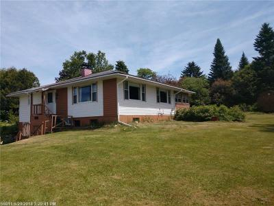 Island Falls Single Family Home For Sale: 1366 Crystal Road