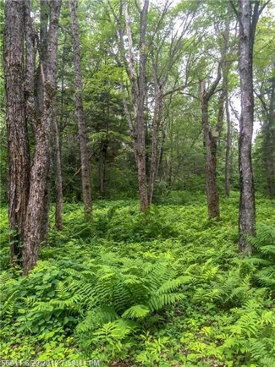 Argyle Twp ME Residential Lots & Land For Sale: $70,000