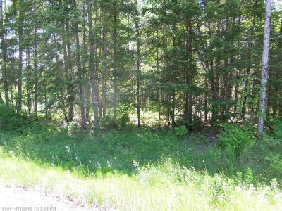 Connor Twp Residential Lots & Land For Sale: 999 Beaulieu Road