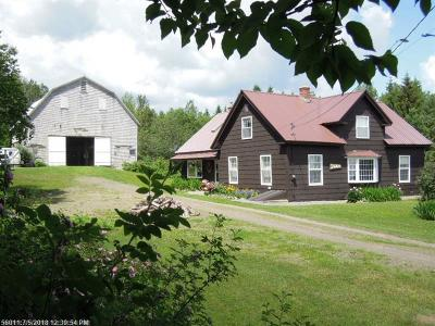 Caribou Single Family Home For Sale: 452 New Sweden Rd