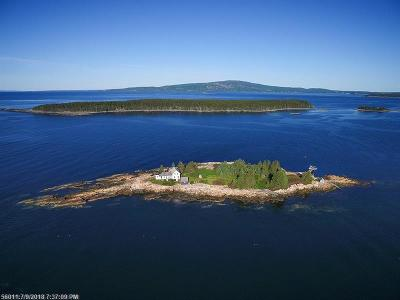 Winter Harbor Single Family Home For Sale: 1 Mark Island