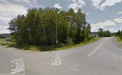 Residential Lots & Land For Sale: Lot 40 Main St