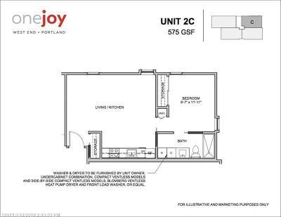 Portland Condo For Sale: 1 Joy Pl 2c #2C