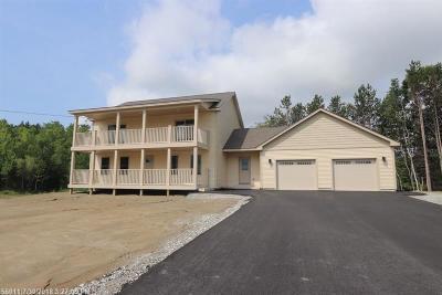 Hampden Single Family Home For Sale: 20 Perkins Drive