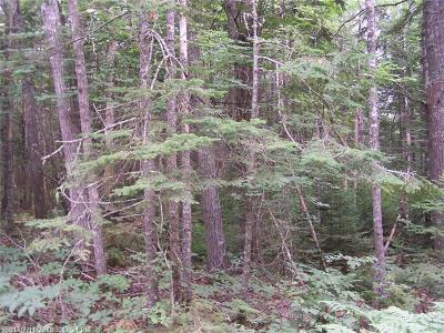 Sullivan Residential Lots & Land For Sale: 28 Evergreen Point Road