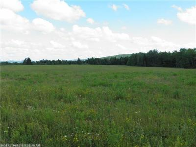 Dyer Brook Residential Lots & Land For Sale: 1157 Townline Road