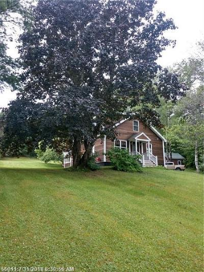 Oakfield Single Family Home For Sale: 49 Spaulding Lake Rd