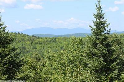 Mount Chase Residential Lots & Land For Sale: 352 Ackley Pond Road