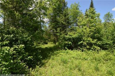 Dexter ME Residential Lots & Land For Sale: $39,900