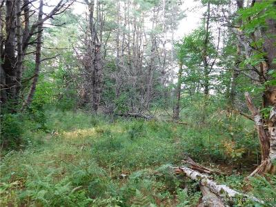 Hampden Residential Lots & Land For Sale: 233 Western Ave
