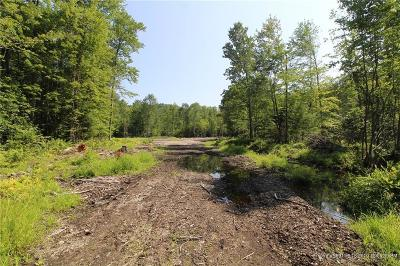 Residential Lots & Land For Sale: R04-032 Route 5/Sokokis Trl