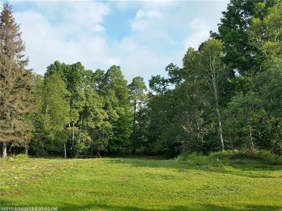 Residential Lots & Land For Sale: Lot 47 Main St.