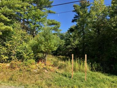 Residential Lots & Land For Sale: 0-31-A No Name Pond Rd
