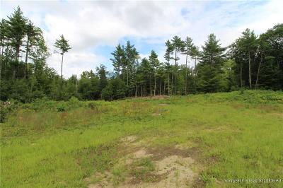 Residential Lots & Land For Sale: R01-054 Route 5/Sokokis Trl
