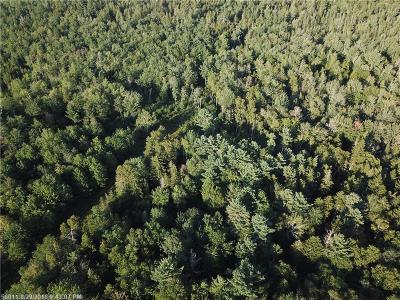 Residential Lots & Land For Sale: 71 Black Rd S