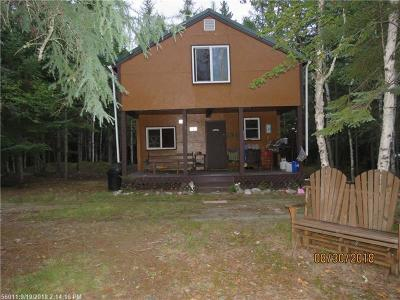 Woodland Single Family Home For Sale: 195 Thibodeau Road