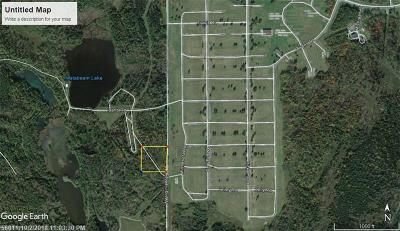 Aroostook County Residential Lots & Land For Sale: L2 West Virginia Rd