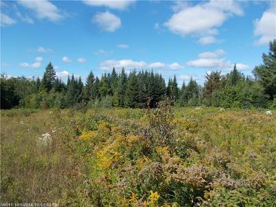 Portage Lake Residential Lots & Land For Sale: Lot 20 Portage Road