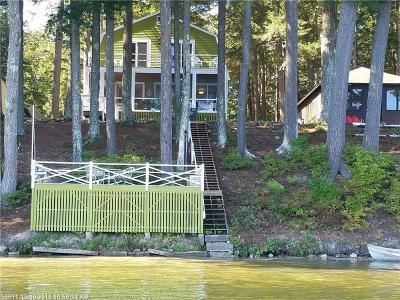 Limington Single Family Home For Sale: 131 Althea Ln