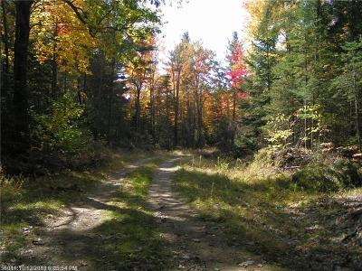 Residential Lots & Land For Sale: 0 Buckfield Rd
