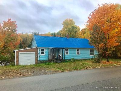 Portage Lake Single Family Home For Sale: 141 West Road