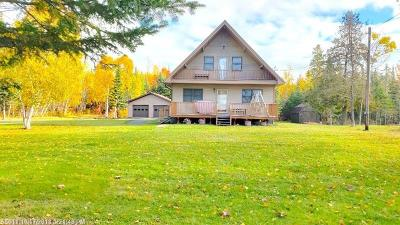 Portage Lake Single Family Home For Sale: 224 Cottage Rd