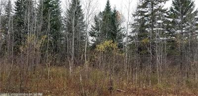 Caribou Residential Lots & Land For Sale: 481 Plante Road