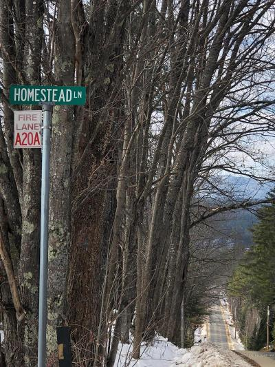 Residential Lots & Land For Sale: 11 Homestead Lane