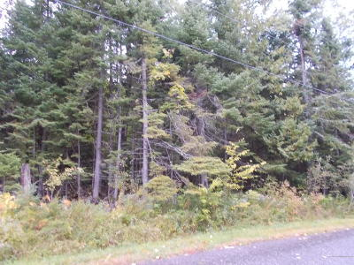 Mapleton Residential Lots & Land For Sale: Lot 7.2 Creasey Ridge Road