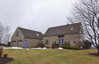Single Family Home For Sale: 27 Valley View Road