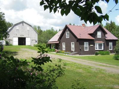 New Sweden Single Family Home For Sale: 452 New Sweden Road