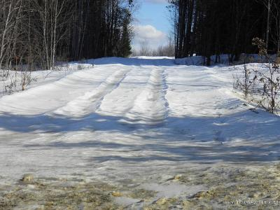 Island Falls Residential Lots & Land For Sale: 95 Crewen Road
