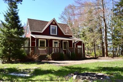 Portland Single Family Home For Sale: 167 New Island Avenue