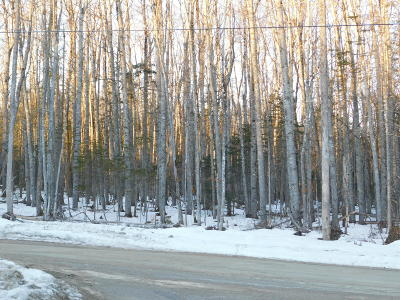 Residential Lots & Land For Sale: Lot 36 Stone Farm Drive