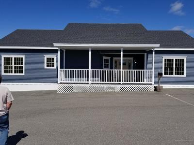 Gouldsboro Single Family Home For Sale: 1 White Tail Lane