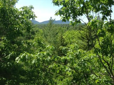 Residential Lots & Land For Sale: Frenchman's Hill