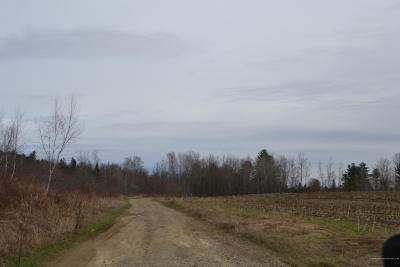 Residential Lots & Land For Sale: Map 1 Ball Hill (Off Old County Rd) Road