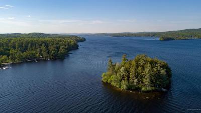 Single Family Home For Sale: 11 Pine Island