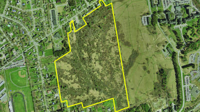 Bangor Residential Lots & Land For Sale: 462 Garland Street