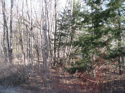 Residential Lots & Land For Sale: Lot 4-27 Page Road
