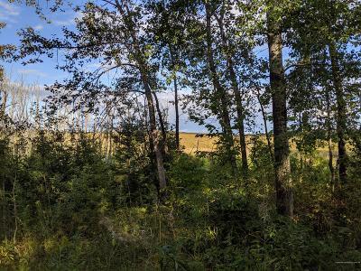 Caribou Residential Lots & Land For Sale: 211 Ogren Rd. Road